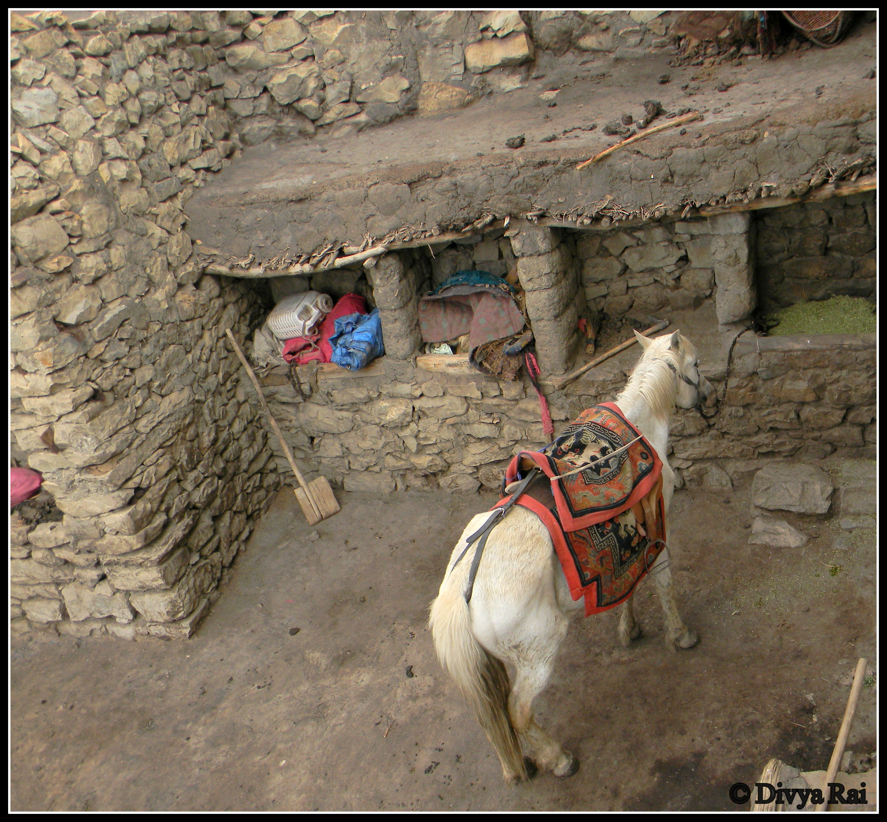 Life in a himalayan village