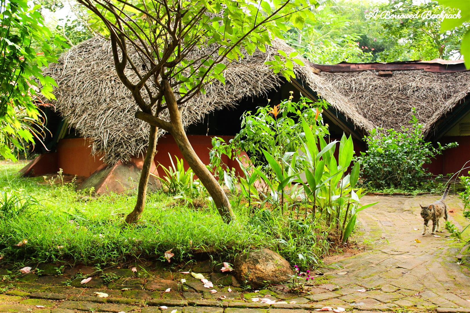 Guest-house in Auroville