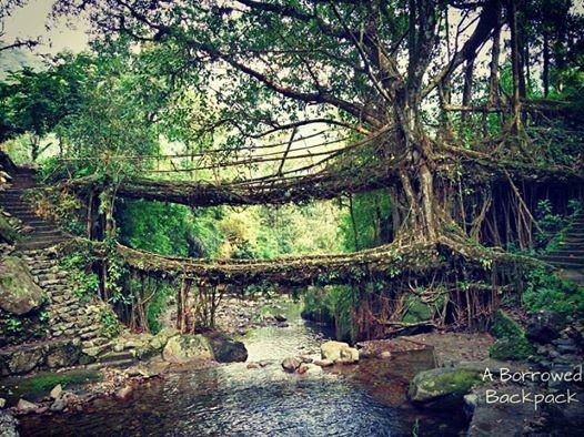 Double decker living root bridge Nongriat